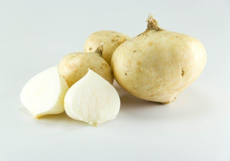 Bà bầu có nên ăn củ đậu? Ăn củ đậu thế nào mới tốt?