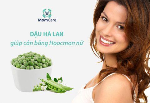 Ăn gì để tăng hoocmon nữ cho chị em? Estrogen có trong thực phẩm nào?